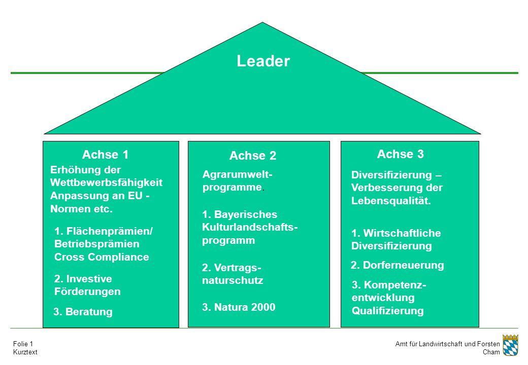 Amt für Landwirtschaft und Forsten Cham Folie 1 Kurztext Erhöhung der Wettbewerbsfähigkeit Anpassung an EU - Normen etc. 1. Flächenprämien/ Betriebspr