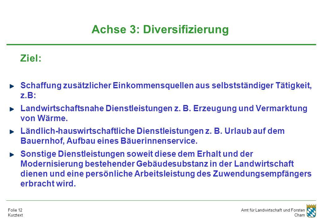Amt für Landwirtschaft und Forsten Cham Folie 12 Kurztext Achse 3: Diversifizierung Ziel: Schaffung zusätzlicher Einkommensquellen aus selbstständiger Tätigkeit, z.B: Landwirtschaftsnahe Dienstleistungen z.