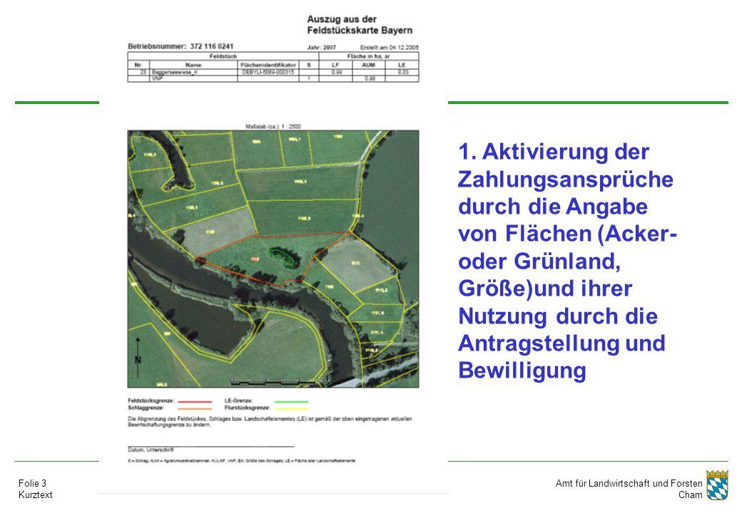 Amt für Landwirtschaft und Forsten Cham Folie 3 Kurztext 1. Aktivierung der Zahlungsansprüche durch die Angabe von Flächen (Acker- oder Grünland, Größ