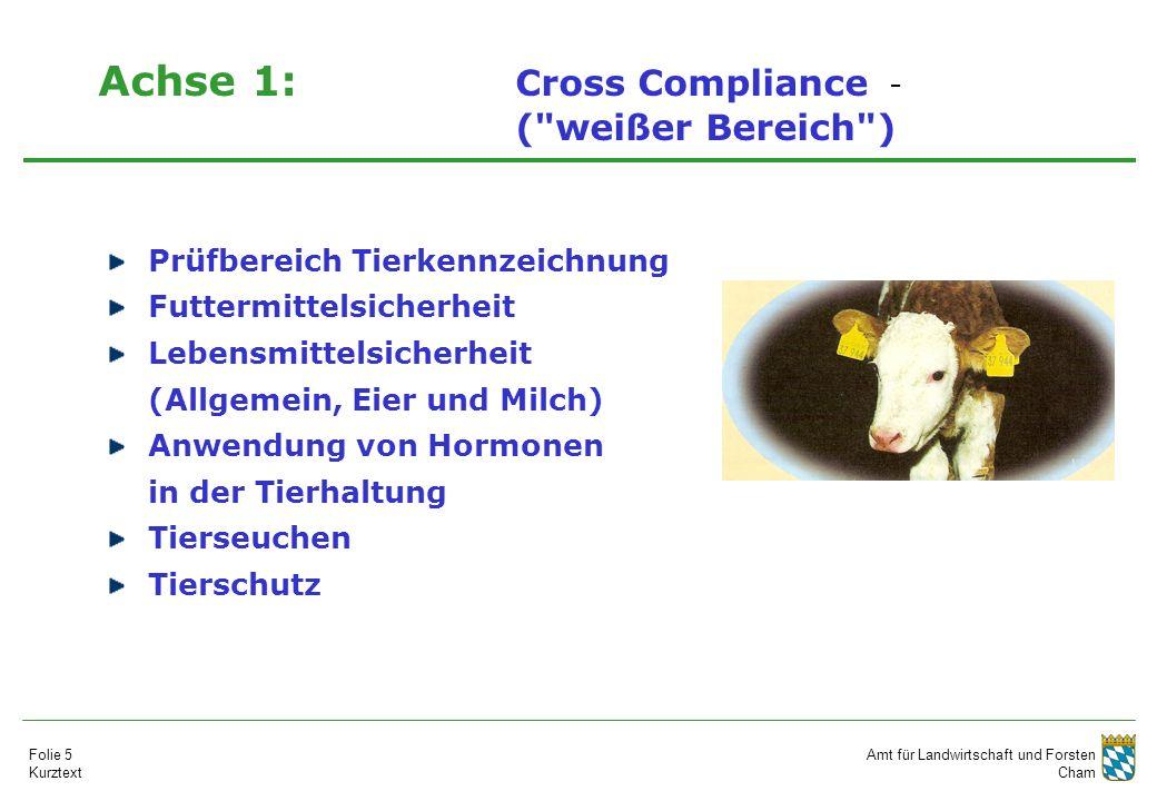 Amt für Landwirtschaft und Forsten Cham Folie 5 Kurztext Achse 1: Cross Compliance - ( weißer Bereich ) Prüfbereich Tierkennzeichnung Futtermittelsicherheit Lebensmittelsicherheit (Allgemein, Eier und Milch) Anwendung von Hormonen in der Tierhaltung Tierseuchen Tierschutz