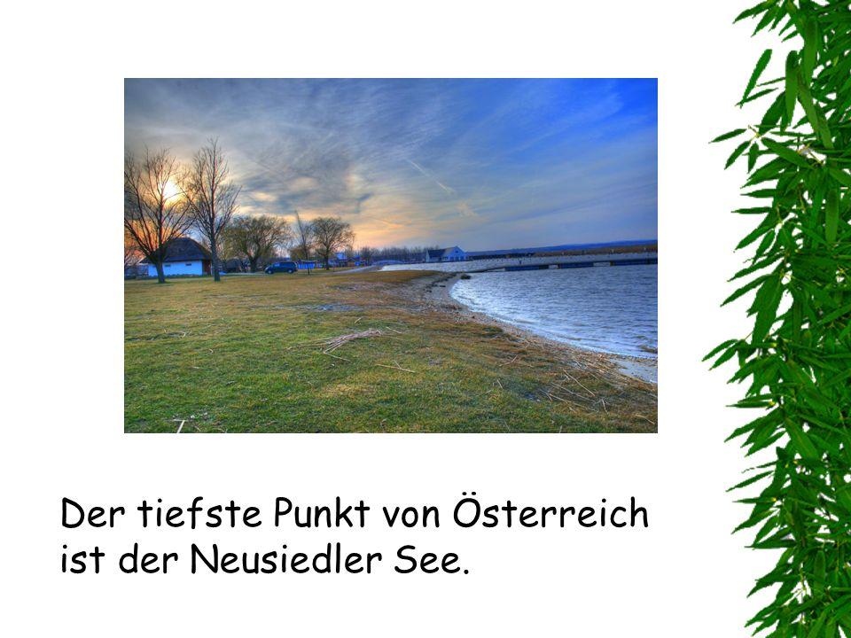Der tiefste Punkt von Österreich ist der Neusiedler See.