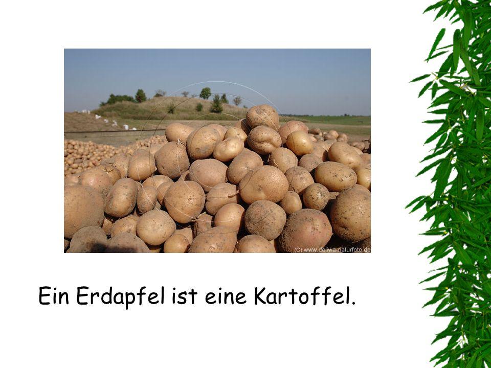 Ein Erdapfel ist eine Kartoffel.