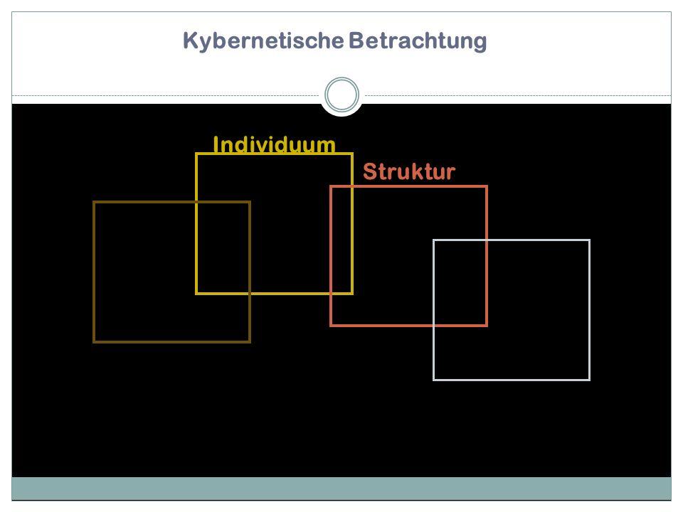 Kybernetische Betrachtung Individuum Struktur