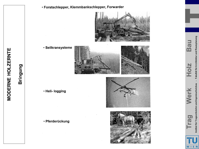 Trag Werk Holz Bau Institut für Tragwerkslehre und Ingenieurholzbau - Fakultät für Architektur und Raumplanung Trag Werk Holz Bau Institut für Tragwerkslehre und Ingenieurholzbau - Fakultät für Architektur und Raumplanung MODERNE HOLZERNTE Bringung