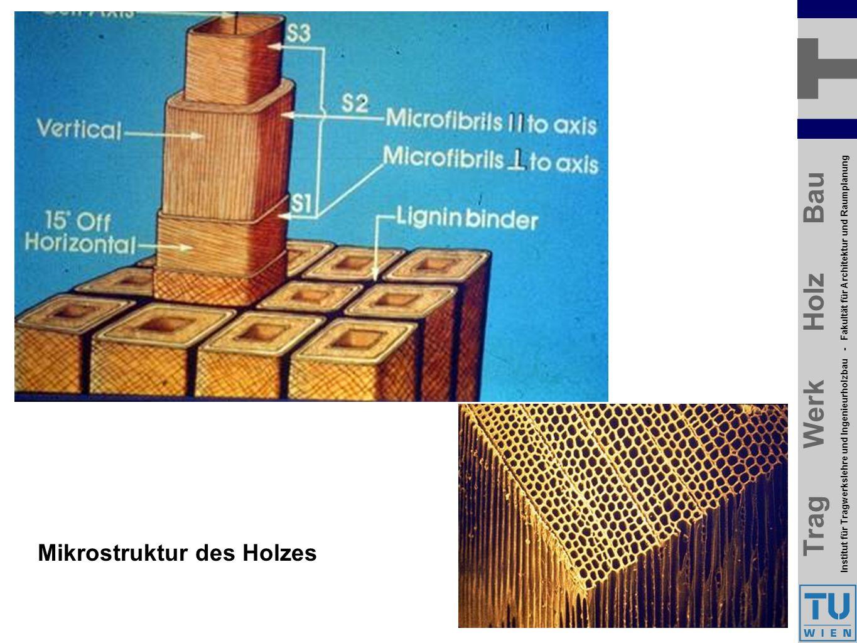 Trag Werk Holz Bau Institut für Tragwerkslehre und Ingenieurholzbau - Fakultät für Architektur und Raumplanung Trag Werk Holz Bau Institut für Tragwerkslehre und Ingenieurholzbau - Fakultät für Architektur und Raumplanung Mikrostruktur des Holzes