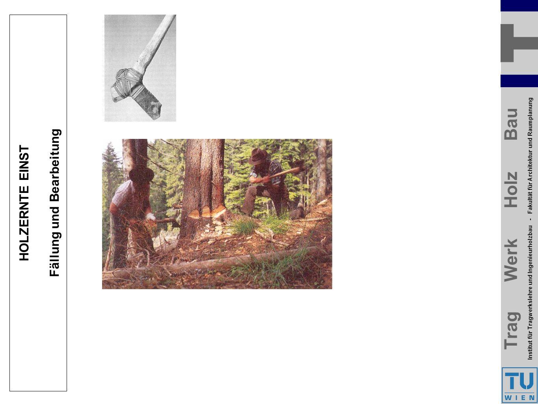 Trag Werk Holz Bau Institut für Tragwerkslehre und Ingenieurholzbau - Fakultät für Architektur und Raumplanung Trag Werk Holz Bau Institut für Tragwerkslehre und Ingenieurholzbau - Fakultät für Architektur und Raumplanung HOLZERNTE EINST Fällung und Bearbeitung