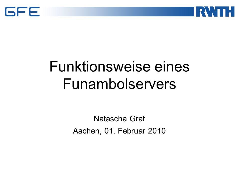 Durch die Software von Funambol können alle gängigen Systeme abgedeckt werden  Großteil der Mitarbeiter hat die Möglichkeit auf dem neuesten Stand zu sein Eigenständiges Programm kann entwickelt werden