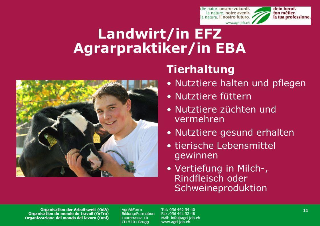 AgriAliForm Bildung/Formation Laurstrasse 10 CH-5201 Brugg Tel:056 462 54 40 Fax:056 441 53 48 Mail: info@agri-job.ch www.agri-job.ch Organisation der Arbeitswelt (OdA) Organisation du monde du travail (OrTra) Organizzazione del mondo del lavoro (Oml) 11 Landwirt/in EFZ Agrarpraktiker/in EBA Tierhaltung Nutztiere halten und pflegen Nutztiere füttern Nutztiere züchten und vermehren Nutztiere gesund erhalten tierische Lebensmittel gewinnen Vertiefung in Milch-, Rindfleisch oder Schweineproduktion