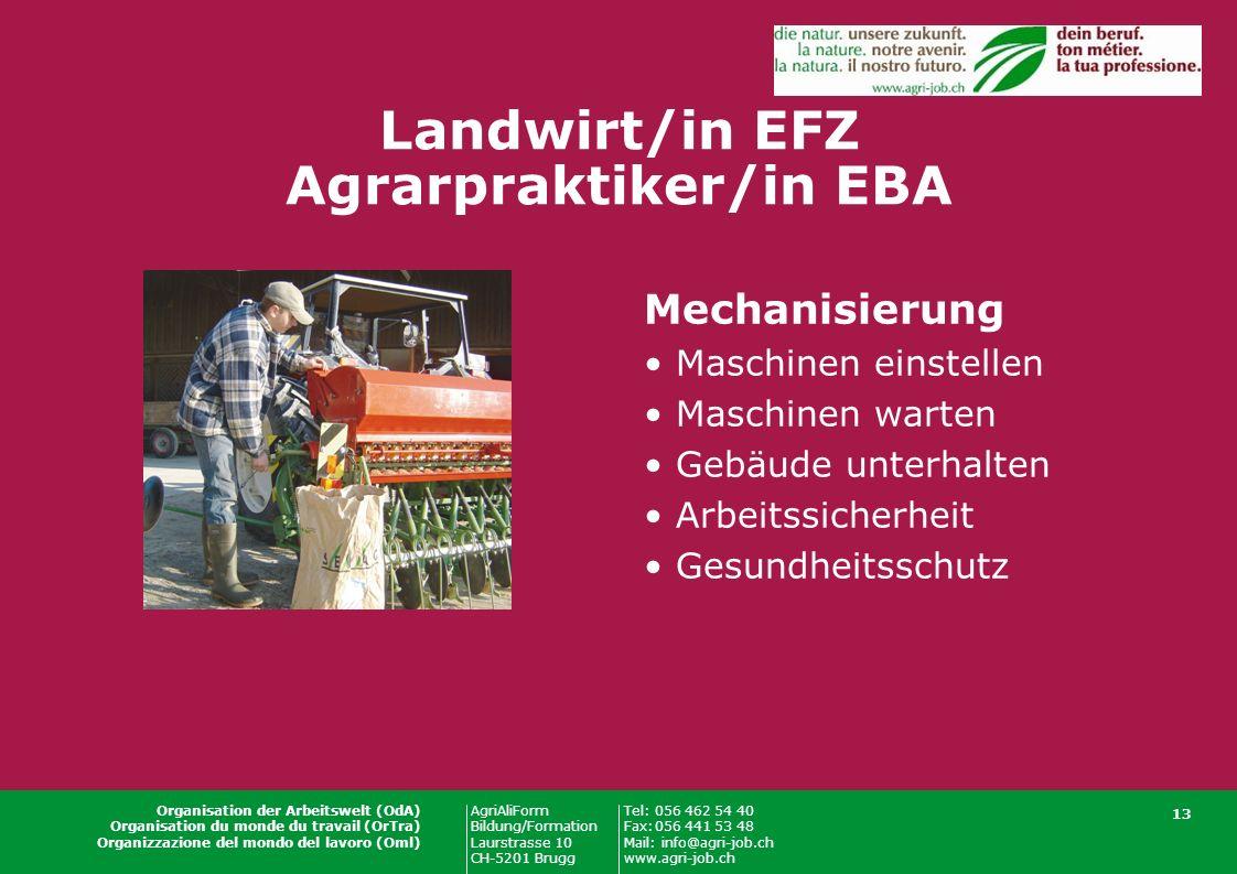 AgriAliForm Bildung/Formation Laurstrasse 10 CH-5201 Brugg Tel:056 462 54 40 Fax:056 441 53 48 Mail: info@agri-job.ch www.agri-job.ch Organisation der Arbeitswelt (OdA) Organisation du monde du travail (OrTra) Organizzazione del mondo del lavoro (Oml) 13 Landwirt/in EFZ Agrarpraktiker/in EBA Mechanisierung Maschinen einstellen Maschinen warten Gebäude unterhalten Arbeitssicherheit Gesundheitsschutz