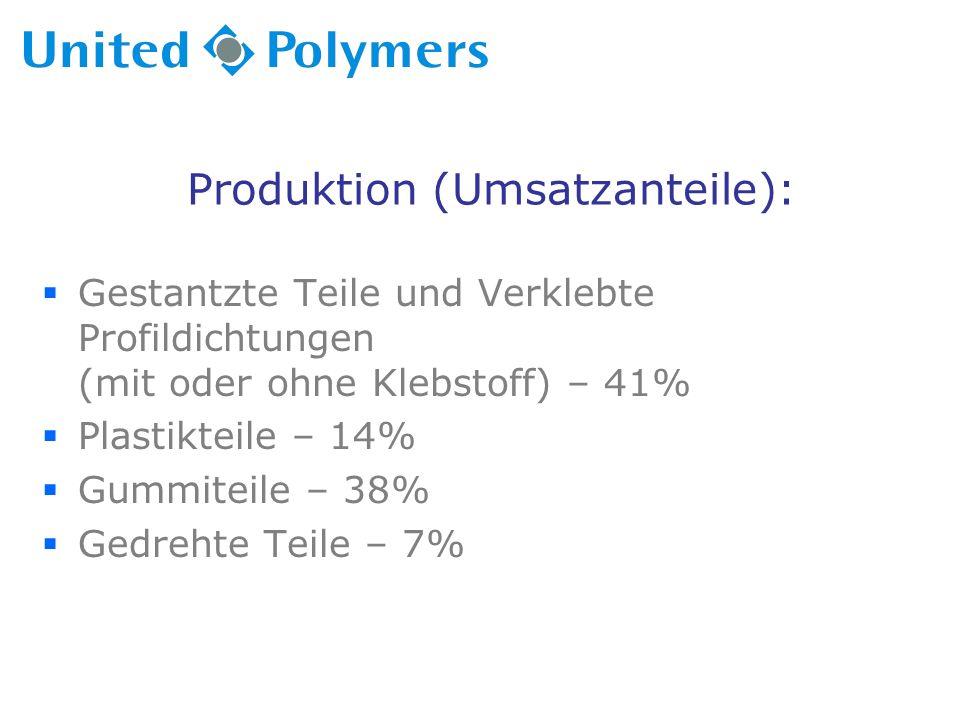 Produktion (Umsatzanteile):  Gestantzte Teile und Verklebte Profildichtungen (mit oder ohne Klebstoff) – 41%  Plastikteile – 14%  Gummiteile – 38%  Gedrehte Teile – 7%