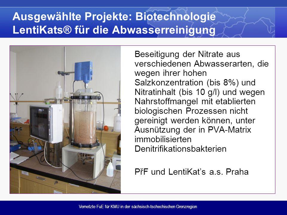 Vernetzte FuE für KMU in der sächsisch-tschechischen Grenzregion Ausgewählte Projekte: Biotechnologie LentiKats® für die Abwasserreinigung Beseitigung