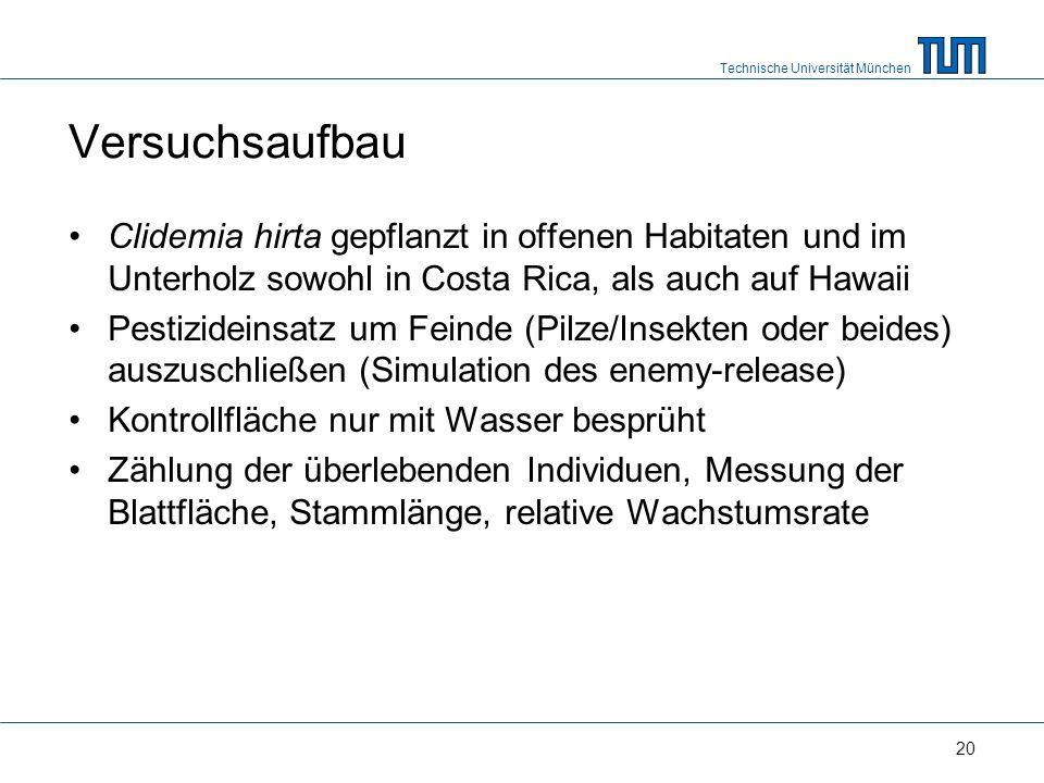 Technische Universität München 20 Versuchsaufbau Clidemia hirta gepflanzt in offenen Habitaten und im Unterholz sowohl in Costa Rica, als auch auf Hawaii Pestizideinsatz um Feinde (Pilze/Insekten oder beides) auszuschließen (Simulation des enemy-release) Kontrollfläche nur mit Wasser besprüht Zählung der überlebenden Individuen, Messung der Blattfläche, Stammlänge, relative Wachstumsrate