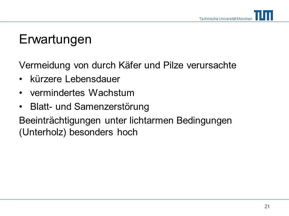 Technische Universität München 21 Erwartungen Vermeidung von durch Käfer und Pilze verursachte kürzere Lebensdauer vermindertes Wachstum Blatt- und Samenzerstörung Beeinträchtigungen unter lichtarmen Bedingungen (Unterholz) besonders hoch