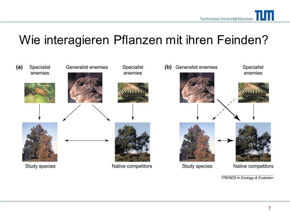 Technische Universität München 7 Wie interagieren Pflanzen mit ihren Feinden