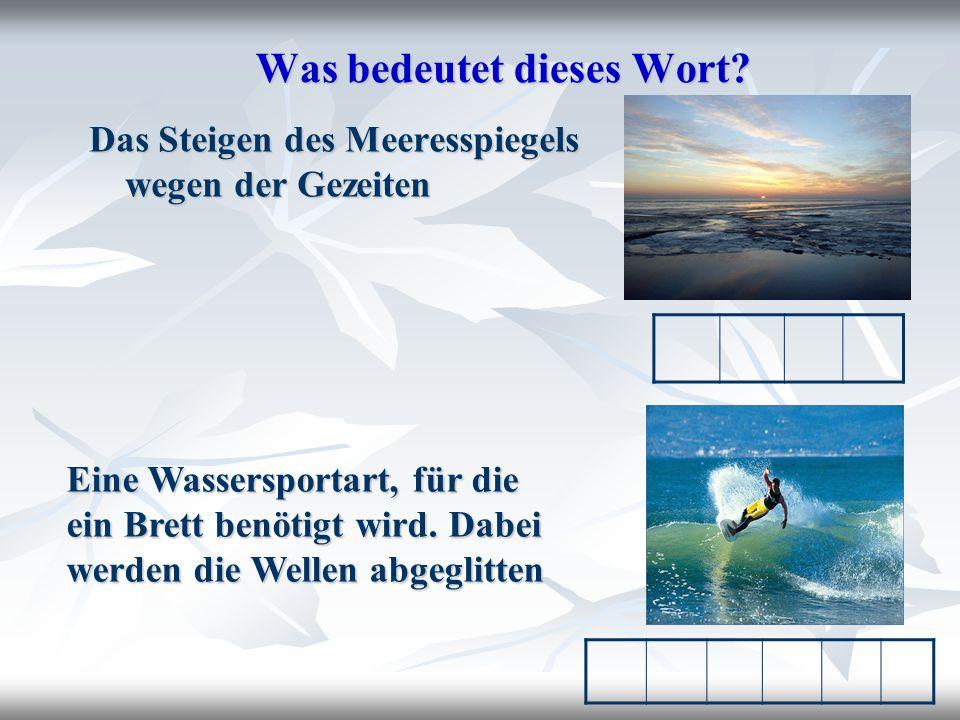 Учащимся предлагается записать в словарь новые слова и выражения Notiert die Wörter in das Wörterheft.