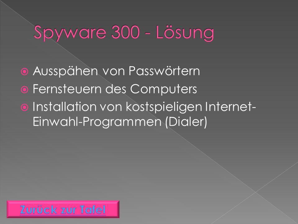  Ausspähen von Passwörtern  Fernsteuern des Computers  Installation von kostspieligen Internet- Einwahl-Programmen (Dialer)