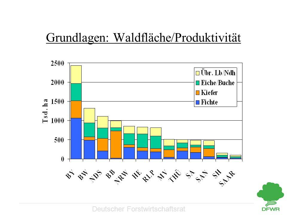 Deutscher Forstwirtschaftsrat Grundlagen Waldfläche Produktivität der Wälder Besitzartenverteilung Strukturen im Privat- und Körperschaftswald