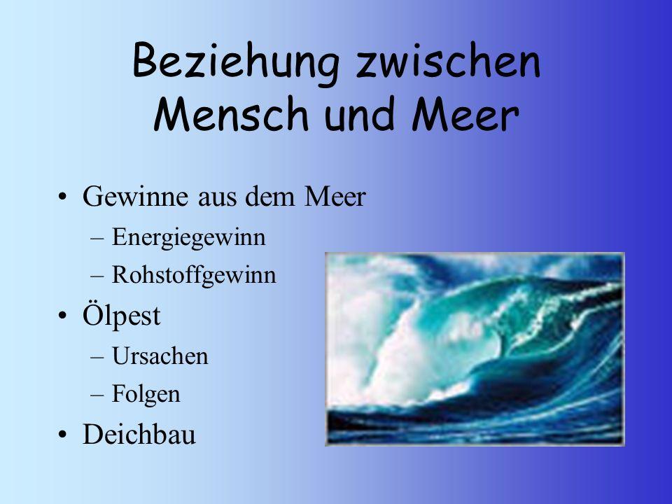 Gewinne aus dem Meer –Energiegewinn –Rohstoffgewinn Ölpest –Ursachen –Folgen Deichbau Beziehung zwischen Mensch und Meer