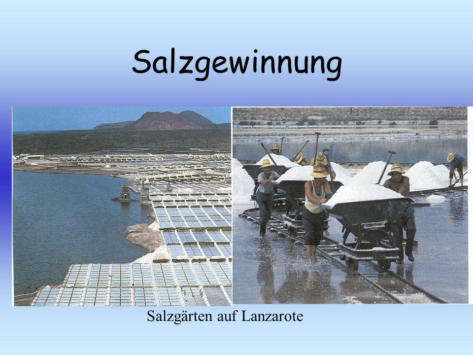 Salzgewinnung Salzgärten auf Lanzarote
