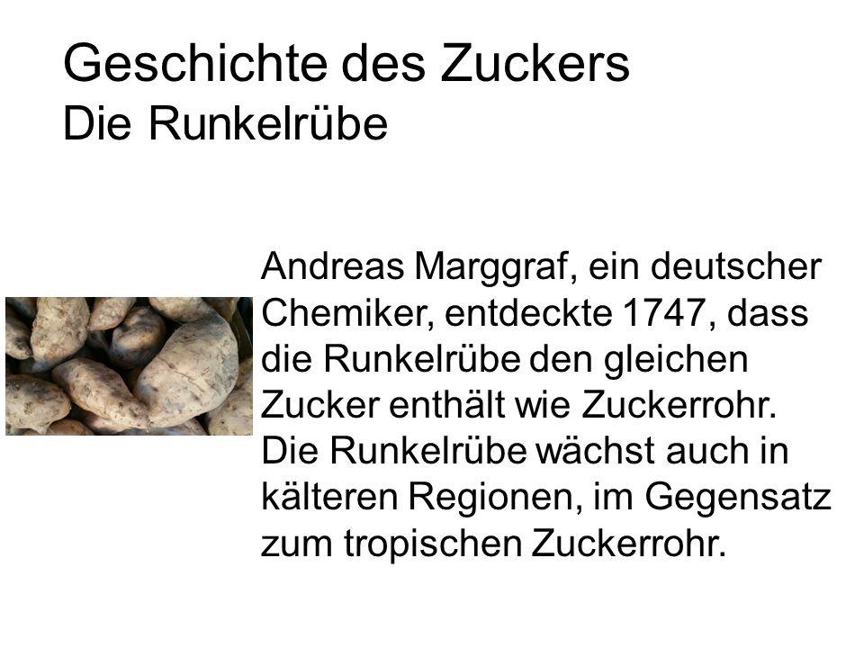 Geschichte des Zuckers Die Runkelrübe Andreas Marggraf, ein deutscher Chemiker, entdeckte 1747, dass die Runkelrübe den gleichen Zucker enthält wie Zuckerrohr.