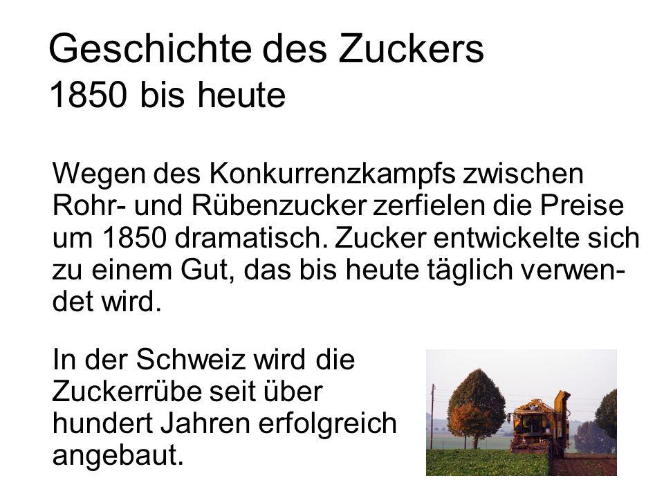 Geschichte des Zuckers 1850 bis heute Wegen des Konkurrenzkampfs zwischen Rohr- und Rübenzucker zerfielen die Preise um 1850 dramatisch.