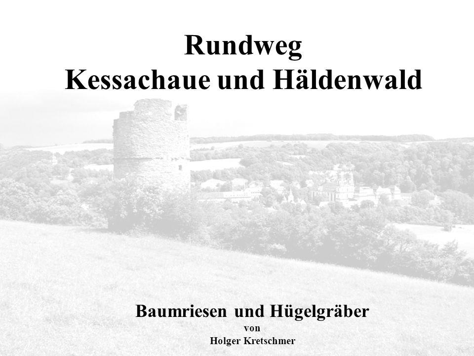 Rundweg Kessachaue und Häldenwald Rundweg Kessachaue und Häldenwald Baumriesen und Hügelgräber von Holger Kretschmer