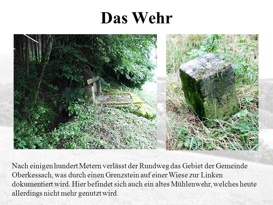 Das Wehr Nach einigen hundert Metern verlässt der Rundweg das Gebiet der Gemeinde Oberkessach, was durch einen Grenzstein auf einer Wiese zur Linken dokumentiert wird.
