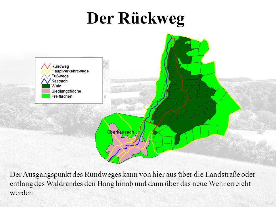 Der Rückweg Der Ausgangspunkt des Rundweges kann von hier aus über die Landstraße oder entlang des Waldrandes den Hang hinab und dann über das neue Wehr erreicht werden.