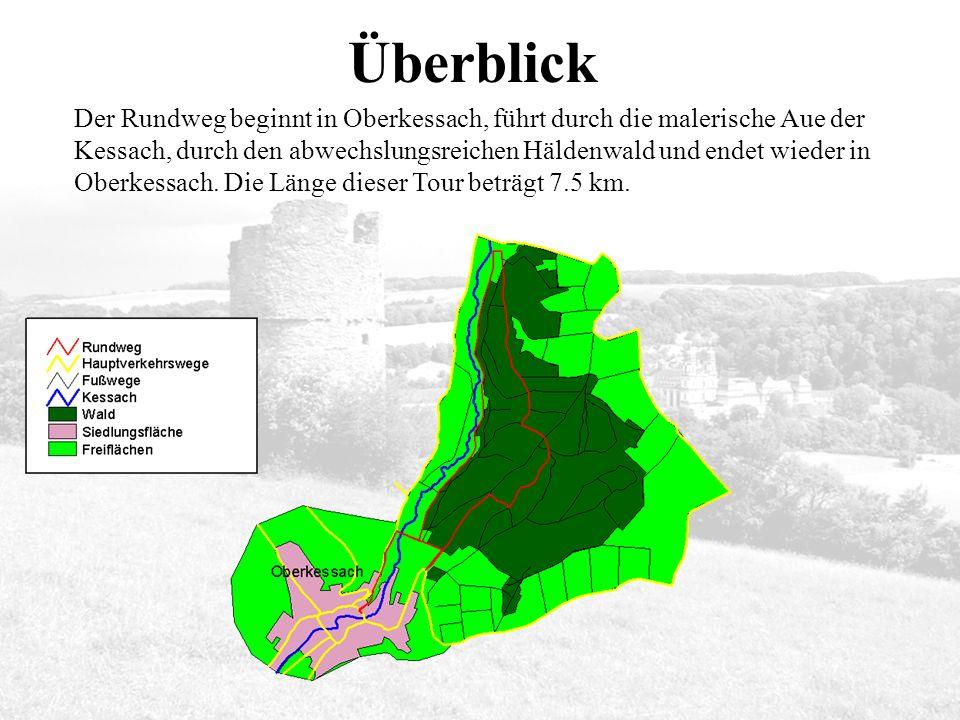Der Rundweg beginnt in Oberkessach, führt durch die malerische Aue der Kessach, durch den abwechslungsreichen Häldenwald und endet wieder in Oberkessach.