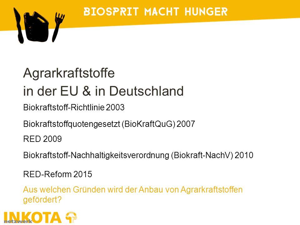 Agrarkraftstoffe in der EU & in Deutschland Biokraftstoff-Richtlinie 2003 Aus welchen Gründen wird der Anbau von Agrarkraftstoffen gefördert? Biokraft