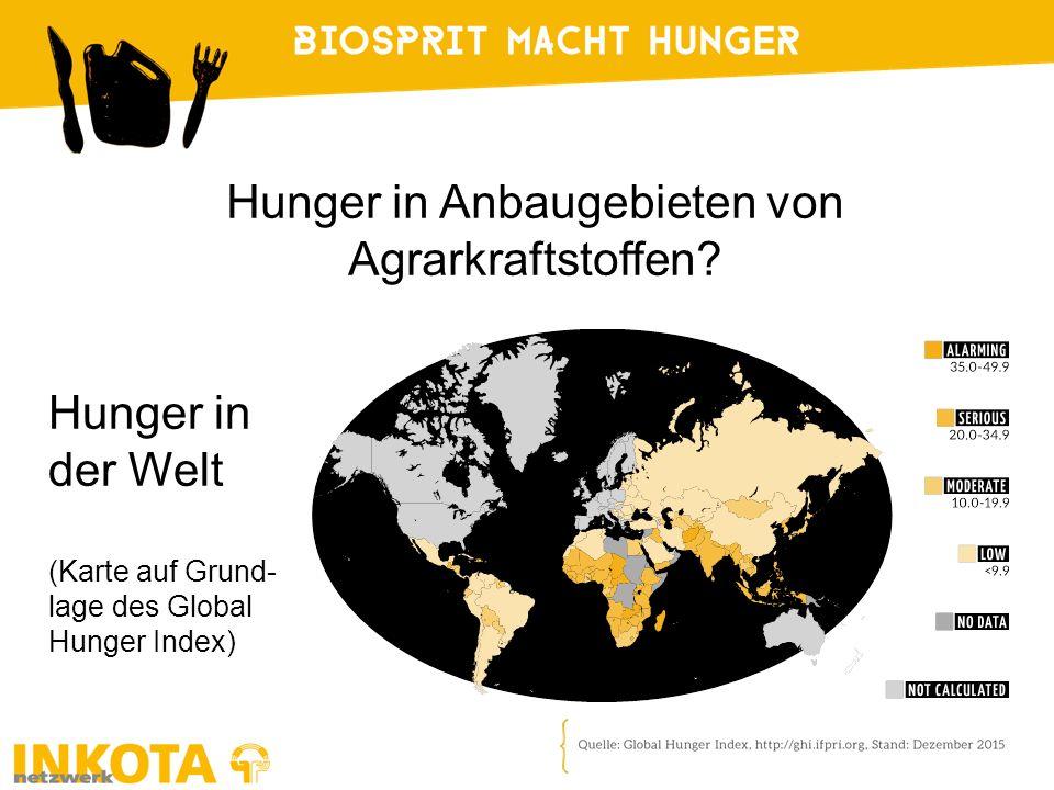 Hunger in Anbaugebieten von Agrarkraftstoffen? Hunger in der Welt (Karte auf Grund- lage des Global Hunger Index)