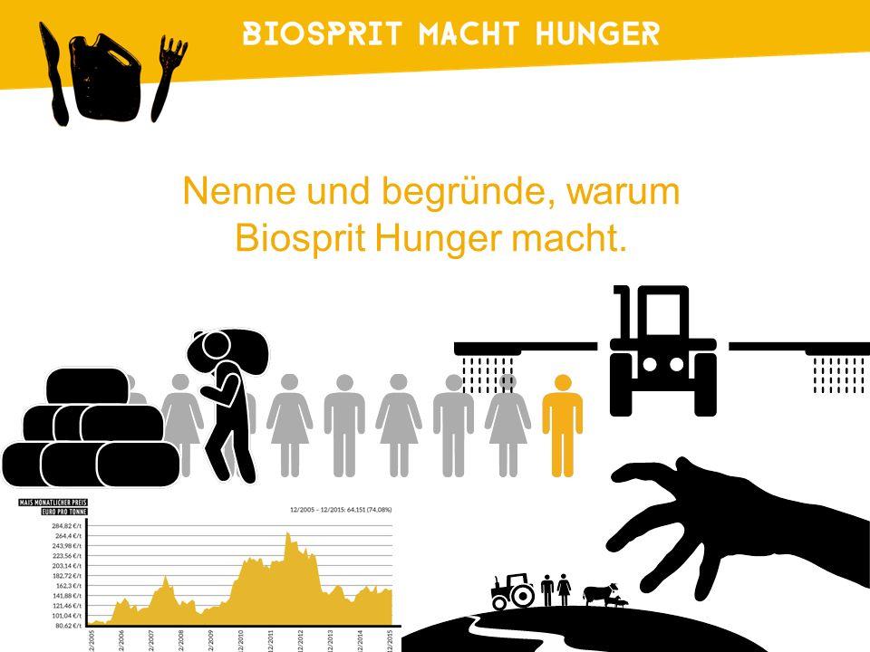 Nenne und begründe, warum Biosprit Hunger macht.