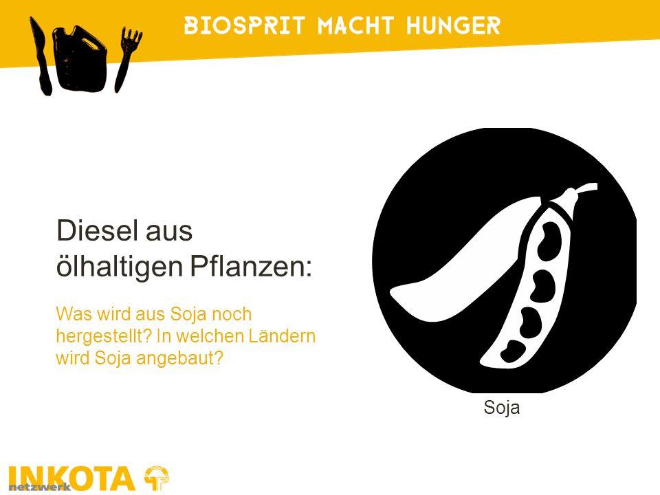 Soja Diesel aus ölhaltigen Pflanzen: Was wird aus Soja noch hergestellt.