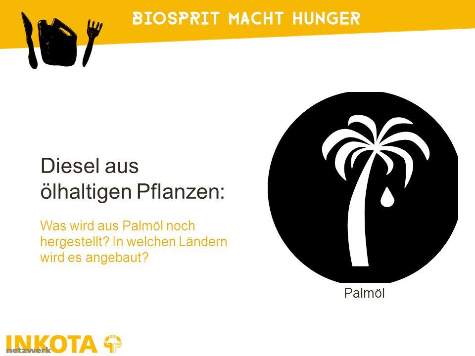 Diesel aus ölhaltigen Pflanzen: Was wird aus Palmöl noch hergestellt.
