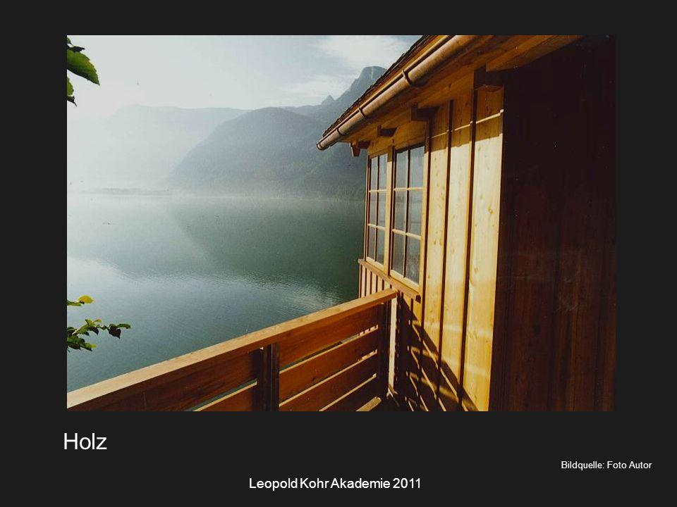 Leopold Kohr Akademie 2011 Bildquelle: Foto Autor Holz