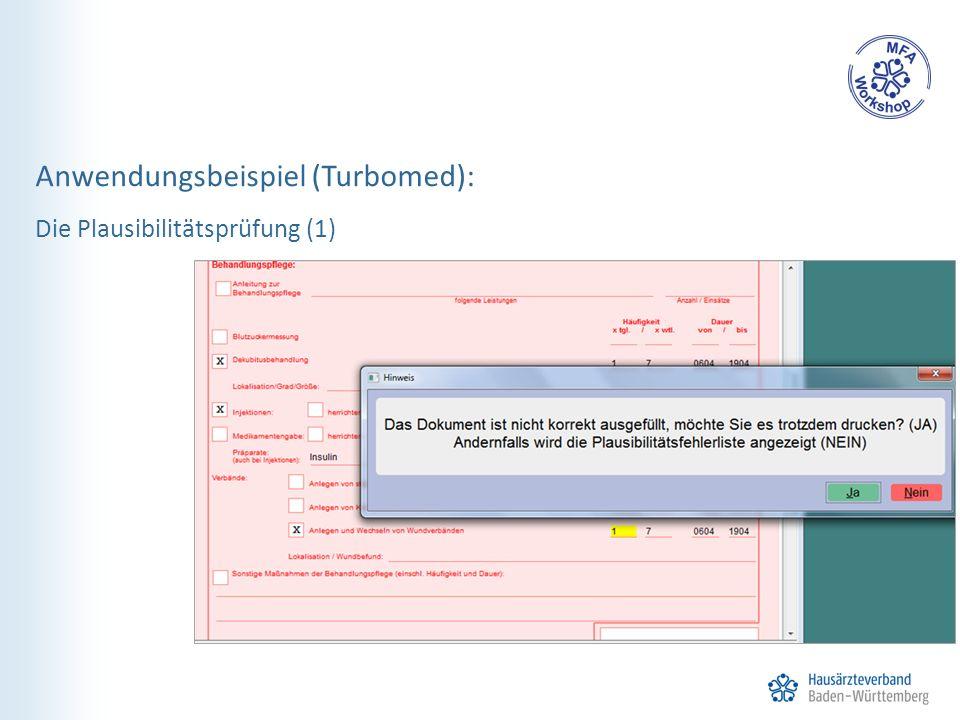 Anwendungsbeispiel (Turbomed): Die Plausibilitätsprüfung (1)
