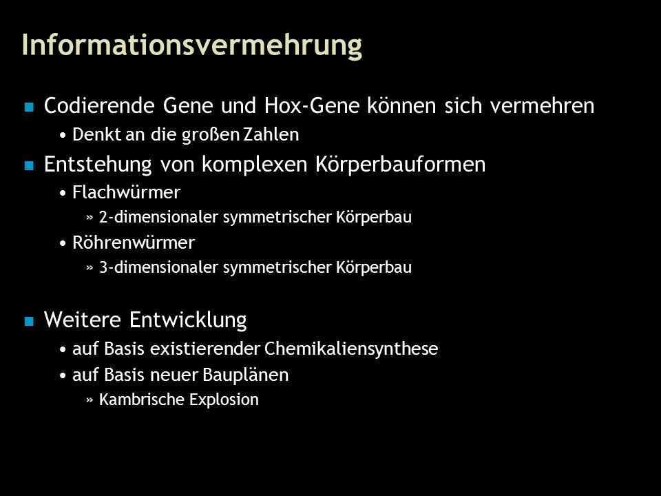 31 Informationsvermehrung Codierende Gene und Hox-Gene können sich vermehren Denkt an die großen Zahlen Entstehung von komplexen Körperbauformen Flachwürmer »2-dimensionaler symmetrischer Körperbau Röhrenwürmer »3-dimensionaler symmetrischer Körperbau Weitere Entwicklung auf Basis existierender Chemikaliensynthese auf Basis neuer Bauplänen »Kambrische Explosion