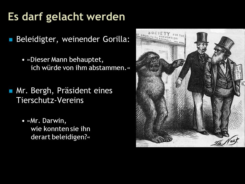 81 Es darf gelacht werden Beleidigter, weinender Gorilla: »Dieser Mann behauptet, ich würde von ihm abstammen.« Mr.