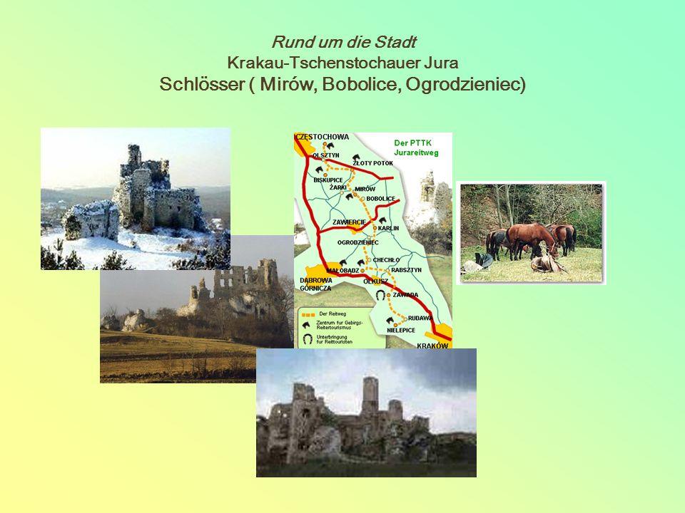 Rund um die Stadt Krakau-Tschenstochauer Jura Schlösser ( Mirów, Bobolice, Ogrodzieniec)