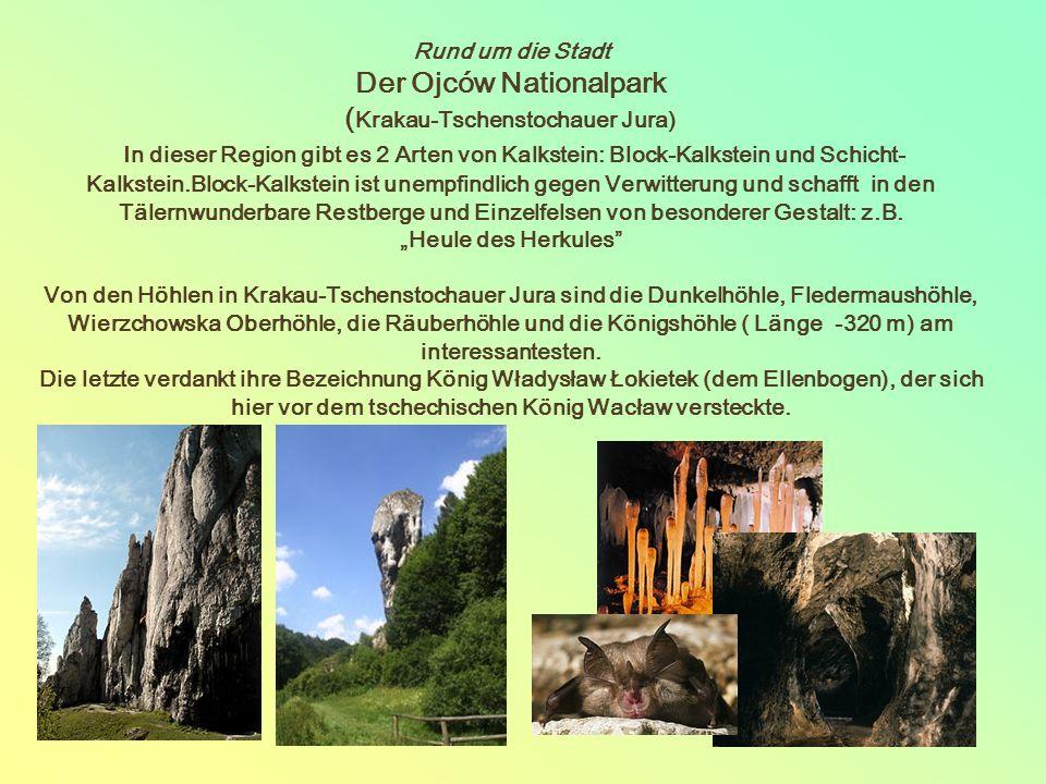 Rund um die Stadt Der Ojców Nationalpark ( Krakau-Tschenstochauer Jura) In dieser Region gibt es 2 Arten von Kalkstein: Block-Kalkstein und Schicht- Kalkstein.Block-Kalkstein ist unempfindlich gegen Verwitterung und schafft in den Tälernwunderbare Restberge und Einzelfelsen von besonderer Gestalt: z.B.