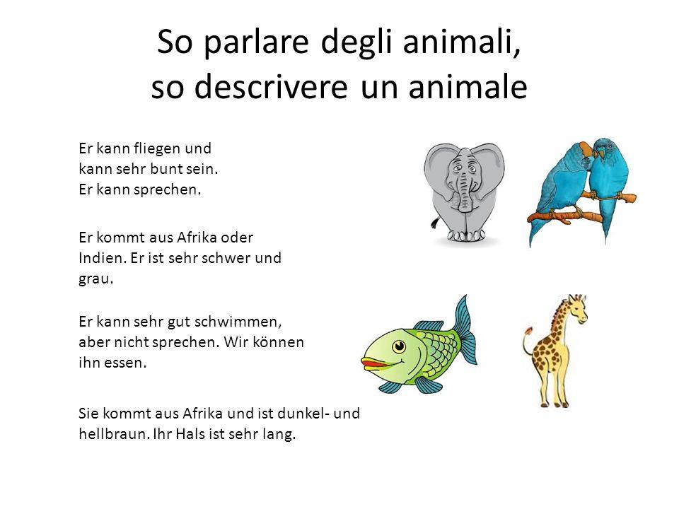 So parlare degli animali, so descrivere un animale Sie kommt aus Afrika und ist dunkel- und hellbraun.
