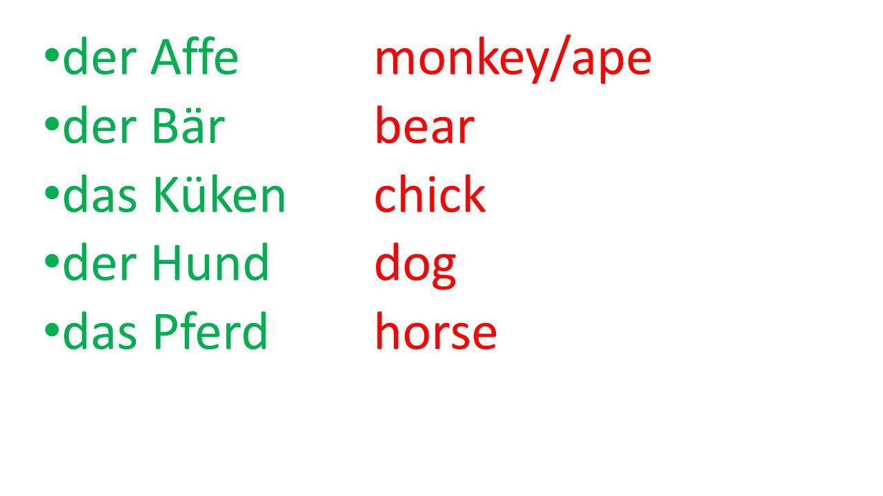der Affe monkey/ape der Bärbear das Kükenchick der Hunddog das Pferdhorse