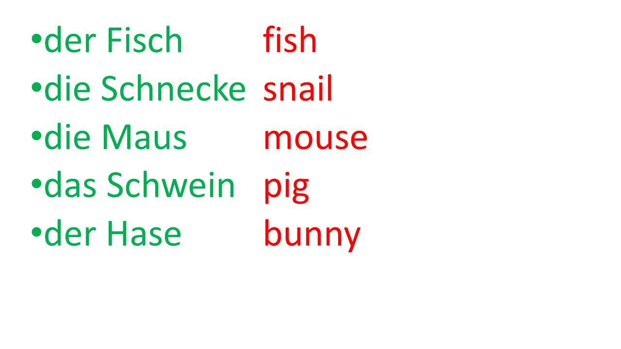der Fisch fish die Schnecke snail die Maus mouse das Schwein pig der Hase bunny