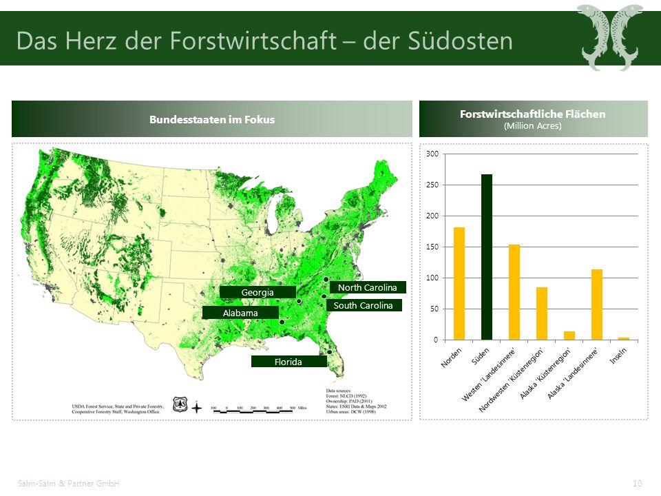 Das Herz der Forstwirtschaft – der Südosten Salm-Salm & Partner GmbH10 Alabama Georgia Florida North Carolina South Carolina Bundesstaaten im Fokus Forstwirtschaftliche Flächen (Million Acres)
