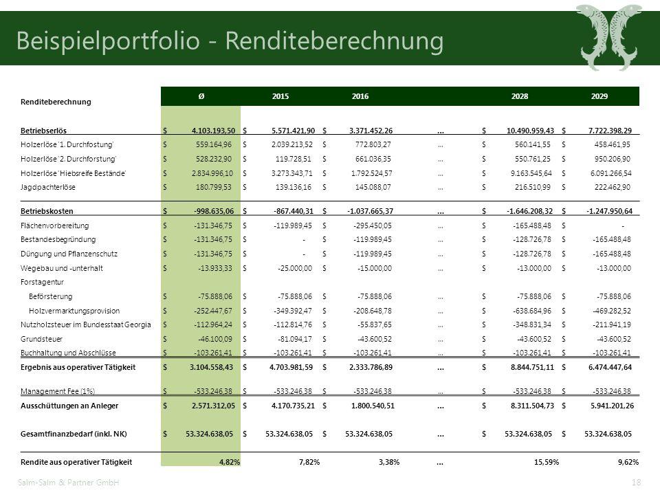 Beispielportfolio - Renditeberechnung Salm-Salm & Partner GmbH18 Renditeberechnung Ø20152016 20282029 Betriebserlös $ 4.103.193,50 $ 5.571.421,90 $ 3.371.452,26 … $ 10.490.959,43 $ 7.722.398,29 Holzerlöse 1.