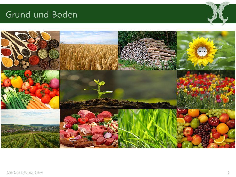 Grund und Boden Salm-Salm & Partner GmbH2
