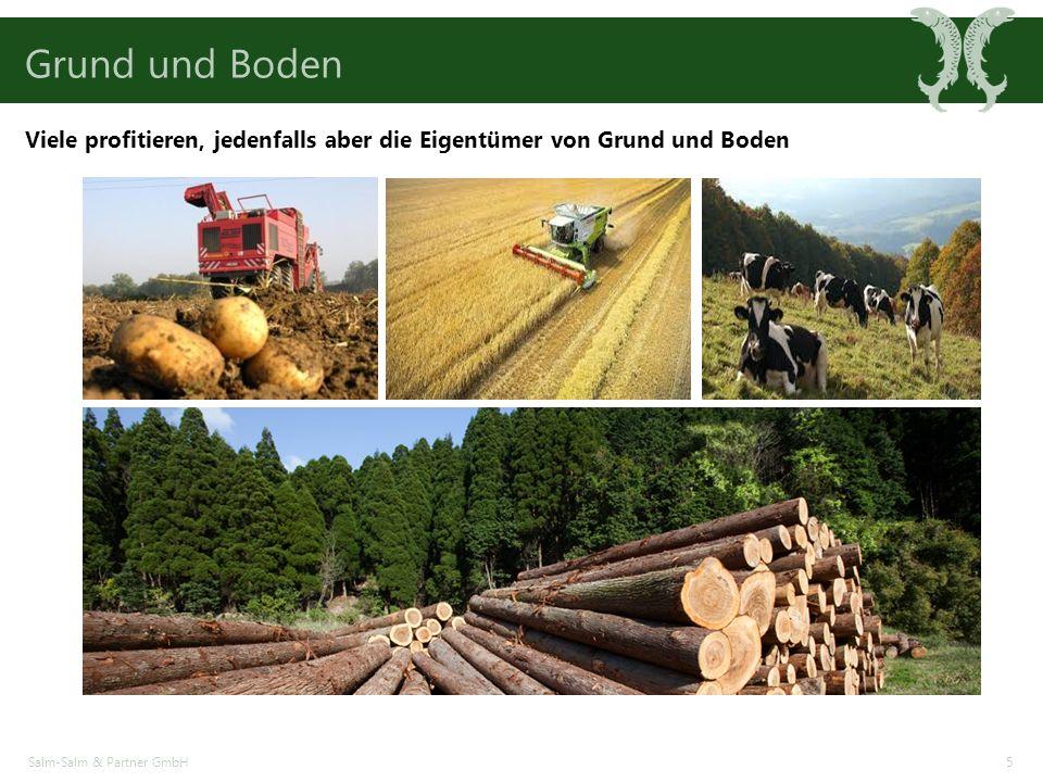 Grund und Boden Salm-Salm & Partner GmbH5 Viele profitieren, jedenfalls aber die Eigentümer von Grund und Boden