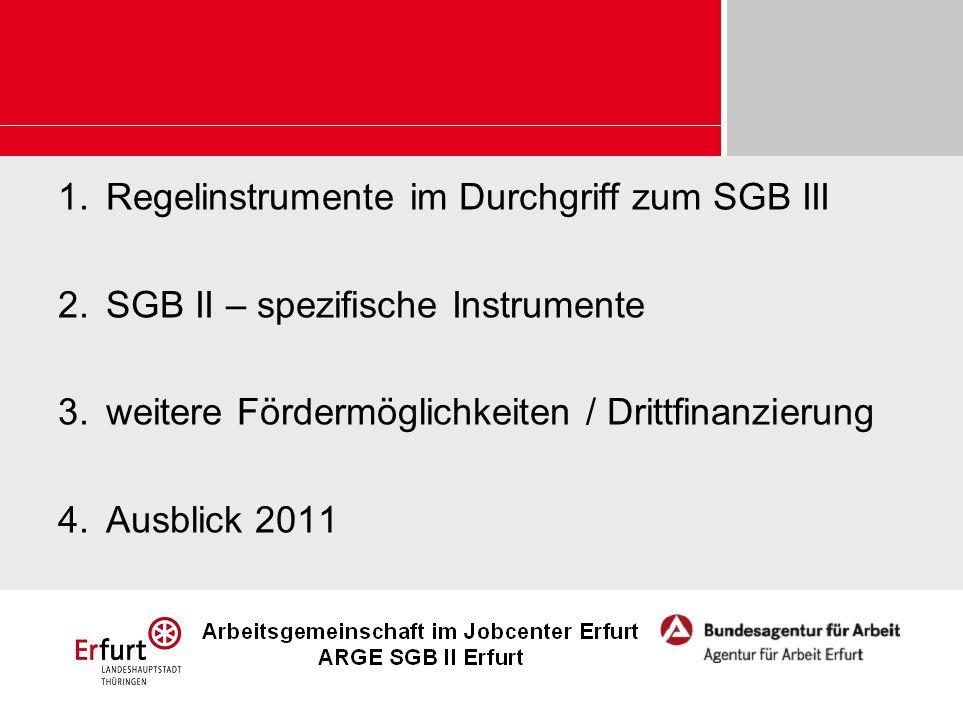 1.Regelinstrumente im Durchgriff zum SGB III 2.SGB II – spezifische Instrumente 3.weitere Fördermöglichkeiten / Drittfinanzierung 4.Ausblick 2011