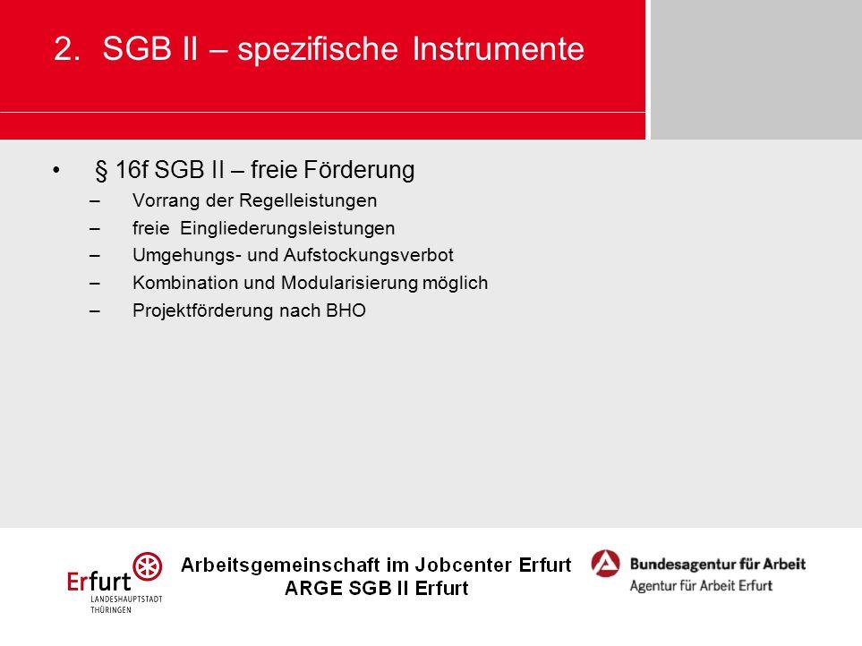 § 16f SGB II – freie Förderung –Vorrang der Regelleistungen –freie Eingliederungsleistungen –Umgehungs- und Aufstockungsverbot –Kombination und Modularisierung möglich –Projektförderung nach BHO 2.SGB II – spezifische Instrumente