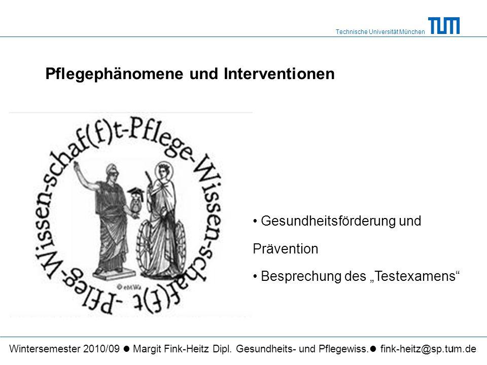 Technische Universität München 1 Pflegephänomene und Interventionen Wintersemester 2010/09 Margit Fink-Heitz Dipl.